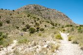 image of stagecoach  - Tejas Canyon walls and trail - JPG