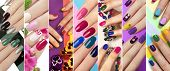 A Diverse Range Of Nail Design.solid Color Manicure With Bright Nail Polishes.collage By Nail Art. poster