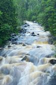 foto of baptism  - River Flowing Through the Woods in Northern Minnesota East Branch of the Baptism River - JPG