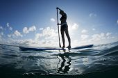 stock photo of stand up  - The stand up paddleboard has taken off in popularity in the last few years - JPG