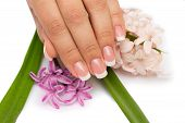 stock photo of hand drill  - Professional beautifull nail with flowers on white background - JPG