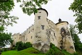 Постер, плакат: Средневековая крепость Недзица в Польше