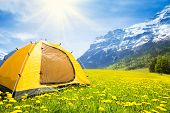 stock photo of tent  - Big yellow family sized camping tent in the nice yellow dandelion field with mountains on background - JPG