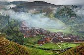 pic of rice  - Yao Village Dazhai Longsheng near the town of Guilin Guangxi Province China  - JPG