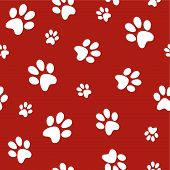 stock photo of paw-print  - white dog footprints on red background vector - JPG