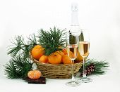 foto of tangerine-tree  - New Year - JPG