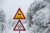 pic of sleet  - Dangerous and icy road with sleet covered trees - JPG