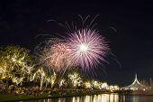 image of night-blooming  - beautiful fireworks blooming on dark sky and people watching below - JPG