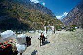 image of sherpa  - Village in  Nepal - JPG