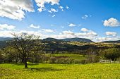stock photo of serbia  - Radocelo mountain landscape at autumn sunny day, central Serbia ** Note: Soft Focus at 100%, best at smaller sizes - JPG
