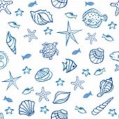 foto of shell-fishes  - Seamless pattern with sea shells star fish on the chalk Board - JPG