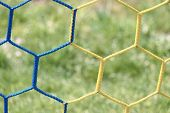 Detail Of Yellow Blue Crossed Soccer Football Net With Grass poster