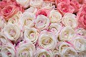 Постер, плакат: Большой букет из нескольких розовых роз невесты на свадьбе Может использоваться как фон текстура