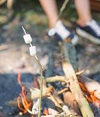 Camp Tradition. Marshmallows On Stick With Bonfire And Smoke On Background. How To Roast Marshmallow poster
