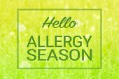 Natural Green Grass And Flowers Background And Hello Allergy Season Text Sign. Spring Summer Seasona poster