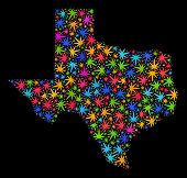 Bright Vector Cannabis Texas State Map Mosaic On A Black Background. Template With Multi-colored Wee poster