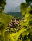 View on Andlau wine village in Alsace France through blurred vines