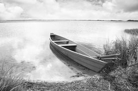 picture of boggy  - boat in a high cane on the bank of lake - JPG
