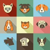picture of pooping  - Pets vector icons  - JPG