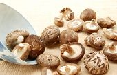 image of edible mushroom  - Shiitake mushroom, Authentic Chinese mushroom for health