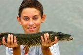stock photo of catching fish  - Caucasian smiling boy with a big pike in hands - JPG