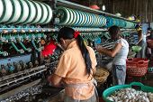 picture of silk worm  - Women are producing silk - JPG