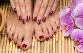 stock photo of wet feet  - Pedicure and manicure in the salon spa - JPG