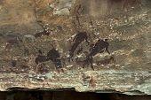 image of natal  - Rock drawing of long past San people  - JPG