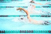 stock photo of swim meet  - Freestyle race - JPG