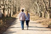 picture of country girl  - rear view of couple holding hands walking in autumn countryside - JPG