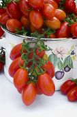 stock photo of plum tomato  - Cherry tomato  - JPG