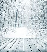 picture of floor covering  - Panorama of winter forest with trees covered snow and wooden floor - JPG