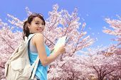 image of sakura  - Happy travel woman look map and smile with sakura cherry blossoms tree on vacation while spring asian - JPG