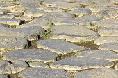 pic of porphyry  - The Sanpietrini typical Rome pavement - JPG