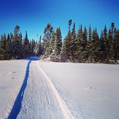 foto of blanket snow  - scenic instagram of snowmobile tracks in snow on a bright day - JPG