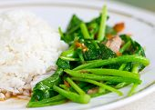 foto of crispy rice  - Chinese broccoli or chinese kale fried with crispy pork beside steamed rice - JPG