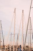 picture of mast  - Silhouette Masts of Sail Yacht in a Marine - JPG