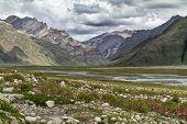 stock photo of trans  - Rangdum valley, Zanskar Ladakh India. Trans Himalaya. ** Note: Visible grain at 100%, best at smaller sizes - JPG