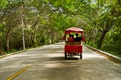 picture of rickshaw  - Tourists travelling in rickshaw enjoying the beautiful views of the coastal province of Manabi - JPG