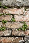 image of survival  - Weathered old artistically built stone wall with plants growing in cracks - JPG
