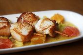picture of scallops  - Close up Scallop seafood appetizer with with oranges and grapefruits - JPG