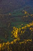 image of serbia  - Aerial view of a meadow illumintad by ray of light at autumn sunrise - JPG