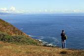 image of bixby  - Coastline at Point Reyes National Seashore California Coast - JPG