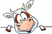 picture of peek  - funny cow cartoon peeking out from behind - JPG