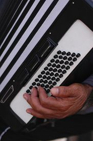 foto of accordion  - The left hand of an old street musician playing the accordions outdoors - JPG