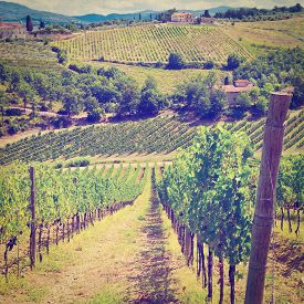 picture of farmhouse  - Italian Farmhouse in Tuscany Surrounded by Vineyards and Groves Instagram Effect - JPG