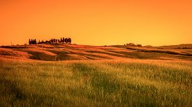 picture of farmhouse  - Fields of Tuscany with farmhouse on a hill - JPG