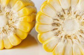 pic of corn cob close-up  - Grains of ripe corn close up on white background - JPG