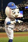 FLUSHING - JUNE 23: New York Mets mascot Mr. Met performs at Citi Field Park on June 23, 2010 in Flu