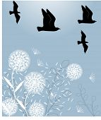 stock photo of caw  - dandelions with birds vector - JPG